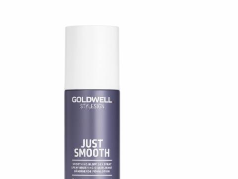 改善毛躁護髮噴霧 HK$180(GOLDWELL)