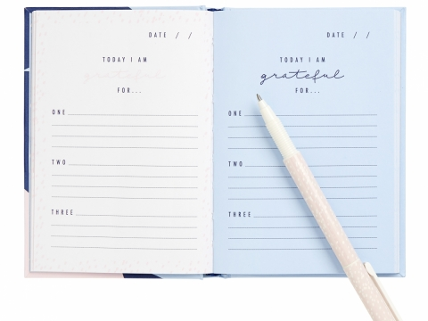 Gratitude Journal $140