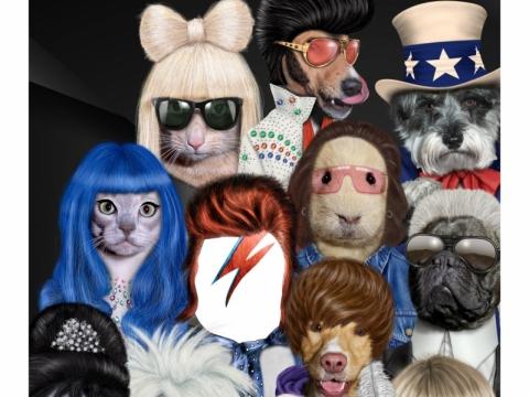 「美圖秀秀」手機app內的Pets Rock相框