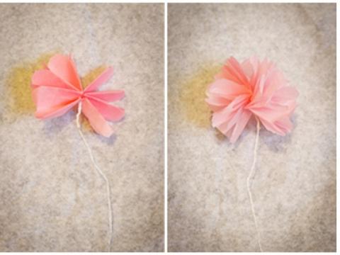 Step 5: 攤開花瓣,並將紙巾分層撕開即成。