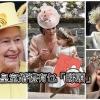 出席皇室大婚點搶鏡?特色禮帽好吸睛