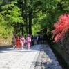 深度遊!Walk Japan細味日本歷史文化