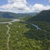 守護我們共有的印尼雨林