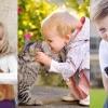 養寵物對小朋友有7大好處!