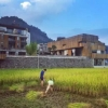 首次中國個展   奧拉維爾「無相萬象」