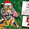 保護地球!你要選這些聖誕禮物