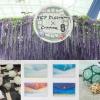 香港都有紫藤花海!賞花手作祭開催